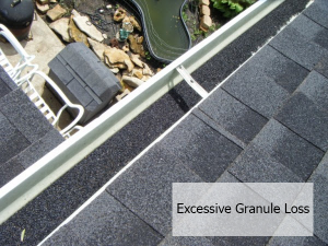 Excessive Granule Loss caused by hail
